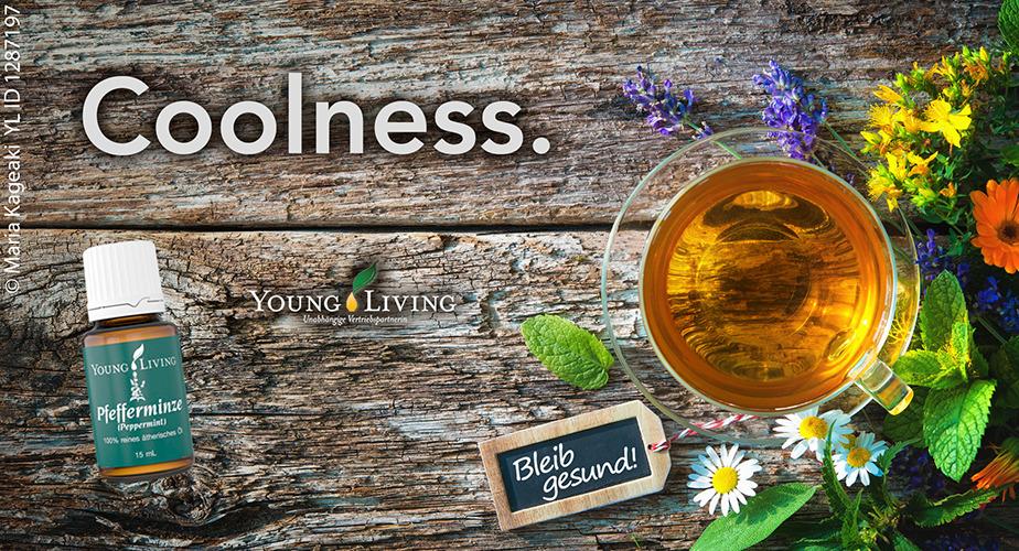 Young Living Pfefferminze Öl Anwendung