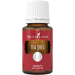 Young Living Tea Tree